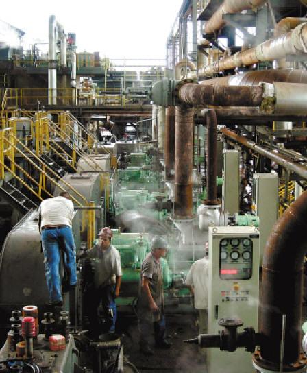 生物能源前途無量 巴西甘蔗替代石油