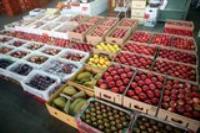 中評鏡頭:臺中果菜市場五顏六色很繽紛