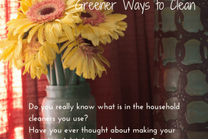 Spring Cleaning Tips: Greener ways to Clean