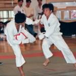 本會學員謝新宇〔右〕在進行男子搏擊比賽 Mr. Tse Sun-yu [right], member of our Association, in a kumite competition