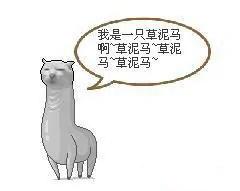 foul_horse