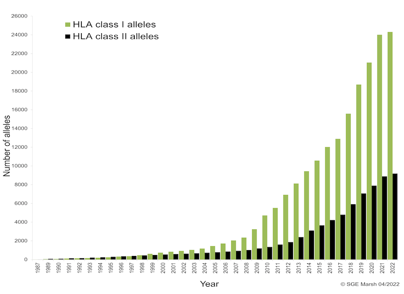 Graph of HLA Alleles and Antigens named by year