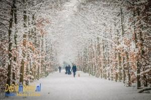 Winter en Sneeuw Leyense bos Bilthoven