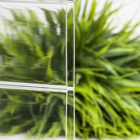 vlf-lichtplatte-acrylglas-stegdoppelplatte-16mm-glasklar-breitkammer-96-lichtdurchlass
