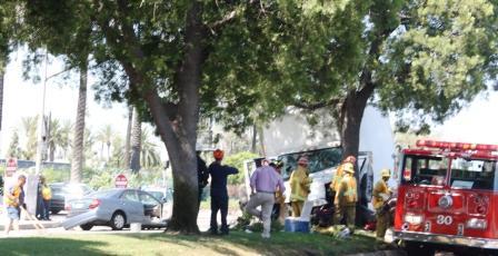 Truck piles into tree, other car on Artesia Boulevard