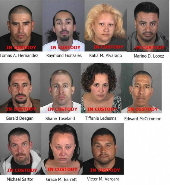 Suspects arrested include Thomas Hernandez, Raymond Gonzales, Katia M. Alvarado, Mariano D. Lopez, Gerald Deegan, Shane Toseland, Tiffanie Ledesma, Edward McCrimmon, Michael Sartor, Grace Barrett, and Victor M. Vergara.
