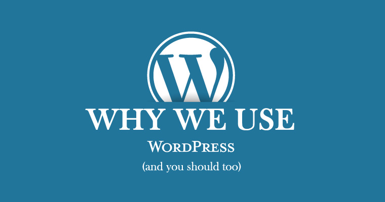 Why We Use WordPress (And Why You Should, Too)