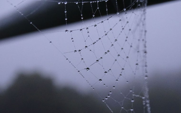 Here's What You Need To Know About The Dark Web