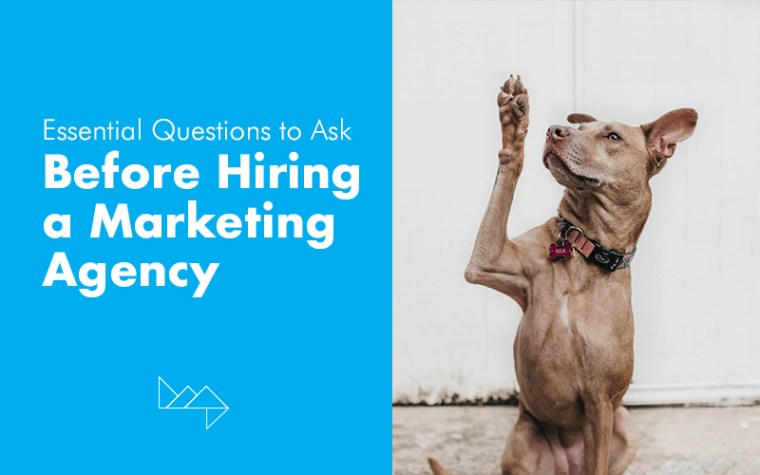 The Essential Questions to Ask Before Hiring a Marketing Agency