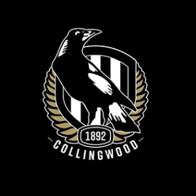 Our Partner Collingwood Football Club