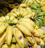 Tables full of bananas