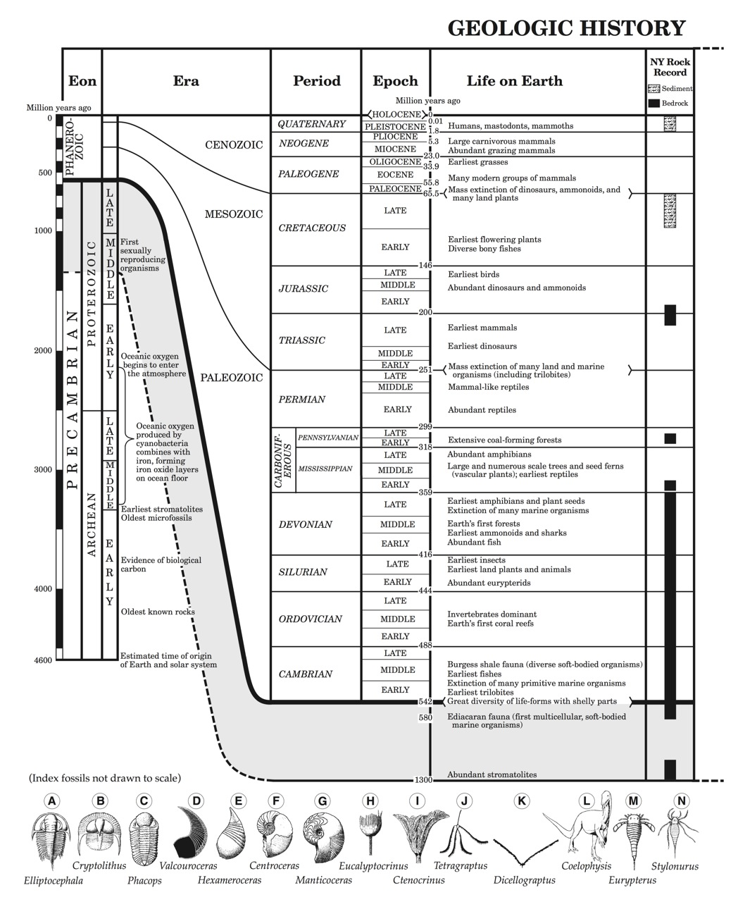hr diagram earth science questions