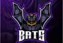 Les Bats champion de la  South East Division !