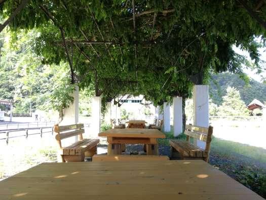 奥多摩湖の木陰休憩スペース
