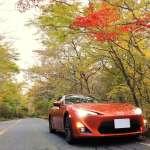 静岡紅葉ドライブコース!【富士山スカイライン~水ヵ塚駐輪場】