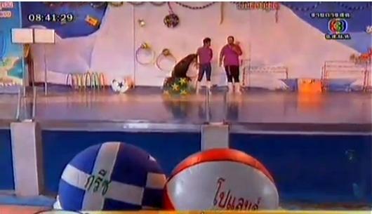 เจ้าติ๊กแมวน้ำไทยแสนรู้ ทายผลบอลยูโร 2012คู่แรก