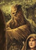 Lowbacca, Chewie's nephew and Jedi Apprentice at Luke's academy.