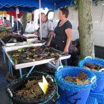 Levende hummer - Marked i Bayeux