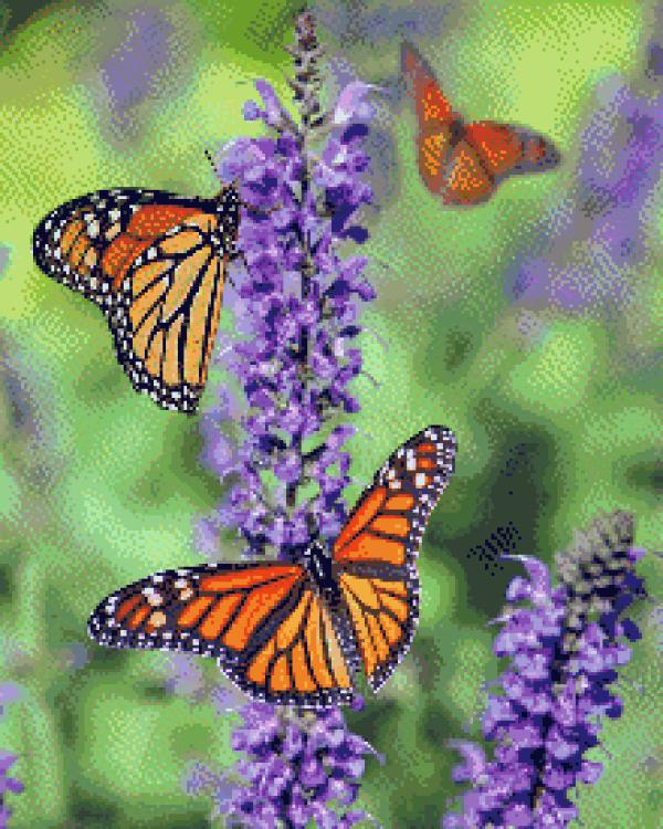 MyHobby borduurpakket - oranje vlinders op paarse bloem