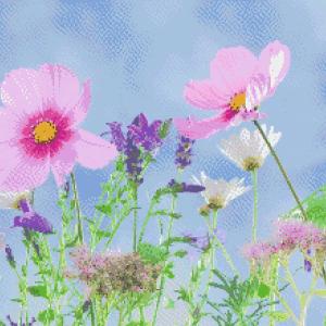 MyHobby borduurpakket - bloemen in het wild