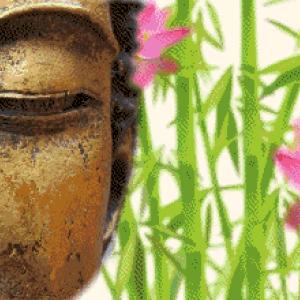 MyHobby borduurpakket - boeddha wellness