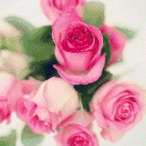 MyHobby borduurpakket - roze roosjes