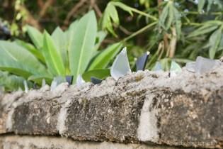 Охрана на оградата 3 - Кута, Бали