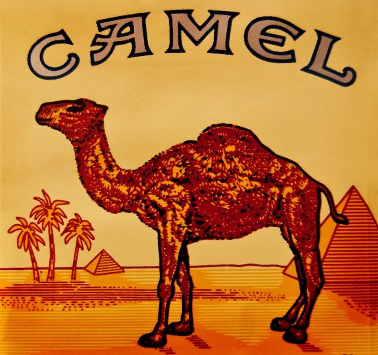 Image result for camel cigarettes