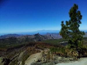 Picos de las Nieves en El Tiede Tenerife