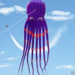 7M-Large-Octopus-Parafoil-Kite-with-Handle-String-Beach-Park-Garden-Outdoor-Fun-0-0