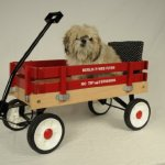 Berlin-F257-Amish-Made-Pee-Wee-Flyer-Wagon-Red-0-1