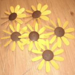 Classic-Spinning-Daisy-x6-case-SUNFLOWER-12-inch-dia-0-0