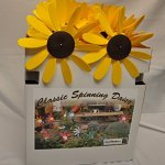 Classic-Spinning-Daisy-x6-case-SUNFLOWER-12-inch-dia-0-1