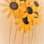Classic-Spinning-Daisy-x6-case-SUNFLOWER-12-inch-dia-0
