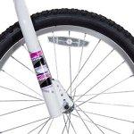 Dynacraft-8109-25ZTJ-Girls-Sapphire-Magna-Bike-Silver-Pink-20-0-2