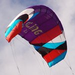Flexifoil-24m226m-Wide-Sting-4-line-Power-Kite-with-90-Day-By-World-Record-Power-Kite-Designer-Safe-Reliable-and-Durable-Power-Kiting-Kite-Training-and-Traction-Kiting-0-0