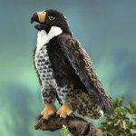Folkmanis-Peregrine-Falcon-Hand-Puppet-0-1