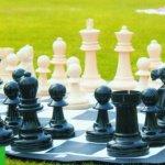 Garden-Chess-0-1