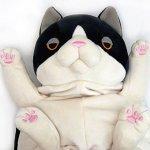 Has-the-cat-plush-bigeye-thresher-L-0-0