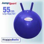 JumpSport-55-cm-Big-Blue-Hoppy-Ball-0