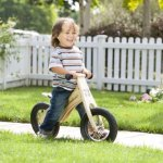 Prince-Lionheart-Balance-Bike-0-1