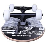 Skateboards-RockBirds-31-Pro-Complete-Skateboard-7-Layer-Canadian-Maple-Skateboard-Deck-for-Extreme-Sports-and-Outdoors-0-0