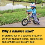 Strider-12-Pro-Balance-Bike-Ages-18-Months-to-5-Years-Silver-0-2