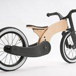 Wishbone-Bike-Cruise-0-1