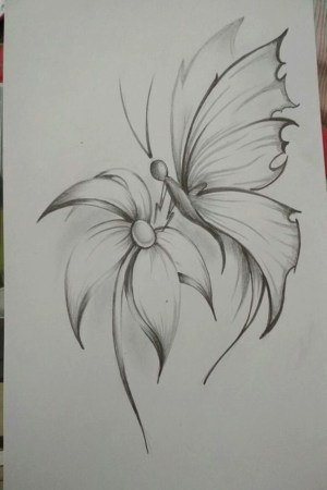 pencil drawings flower drawing easy flowers simple sketch inspiration different tattoo sketches laryoo improve yourself draw exercise hobbylesson shading painting