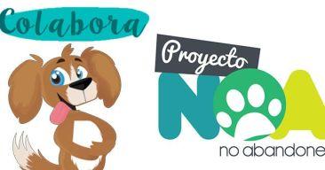 ¡Colabora con Proyecto NOA!