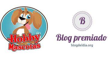 Blog premiado en blogdeldia.org y entrevista