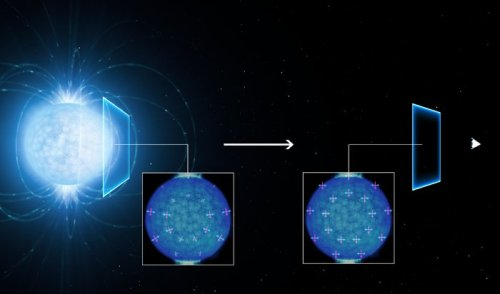This artist's view shows how the light coming from the surface of a strongly magnetic neutron star (left) becomes linearly polarised as it travels through the vacuum of space close to the star on its way to the observer on Earth (right). The polarisation of the observed light in the extremely strong magnetic field suggests that the empty space around the neutron star is subject to a quantum effect known as vacuum birefringence, a prediction of quantum electrodynamics (QED). This effect was predicted in the 1930s but has not been observed before. The magnetic and electric field directions of the light rays are shown by the red and blue lines. Model simulations byRoberto Taverna (University of Padua, Italy) and Denis Gonzalez Caniulef (UCL/MSSL, UK) show how these align along a preferred direction as the light passes through the region around the neutron star. As they become aligned the light becomes polarised, and this polarisation can be detected by sensitive instruments on Earth.