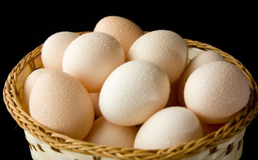 Hal Menarik dari Sebutir Telur Ayam