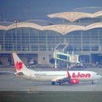 Pengiriman Ayam Kampung Super Tujuan Bandara Kualanamu Medan Pesanan Pak Yuhelwin